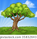 Cartoon Tree Field Landscape Background Scene 35832643