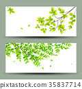 Tropical green leaves banners collections isolated 35837714