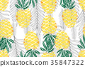 tropical, vector, pineapple 35847322