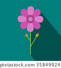 花朵 花 花卉 35849924