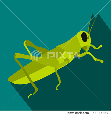 Grasshoppers icon in flat style 35853865