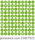 35857021