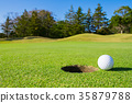 高爾夫球果嶺綠色 35879788