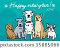 สุนัข,สุนัช,หมาชิบะ 35885066