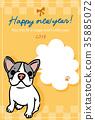 สุนัข,สุนัช,เฟร์นช์บูลล์ดอก 35885072