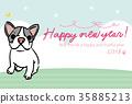 สุนัข,สุนัช,เฟร์นช์บูลล์ดอก 35885213
