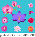Flowers Collection Isolated on Azure Background 35895598