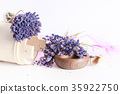 Bunch of lavender flowers on white background 35922750