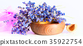 Bunch of lavender flowers on white background 35922754