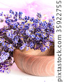 Bunch of lavender flowers on white background 35922755
