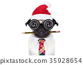 dog office worker on christmas holidays 35928654