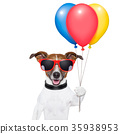 dog balloons and cotton candy 35938953