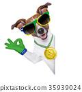brazil soccer dog 35939024