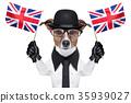 british dog 35939027