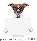 boss dog banner 35939035