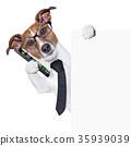dog  smartphone 35939039