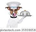 chef, dog, jack 35939058