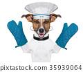 animal, chef, dog 35939064