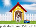home sweet home 35939119