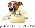 dog phone call 35939150