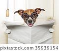 dog toilet 35939154