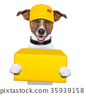 dog delivery post 35939158