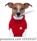 sick dog 35939167