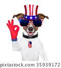 usa american dog 35939172