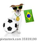 brazil soccer dog 35939190