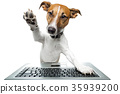 dog computer pc tablet 35939200