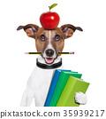 school dog 35939217