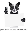 peace fingers dog 35939235