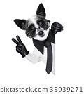 dog  smartphone 35939271