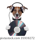 music headphone cd dog 35939272