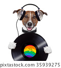 music headphone vinyl record dog 35939275