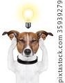 smart intelligent dog 35939279