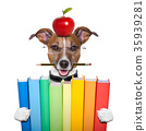 dog and books 35939281