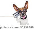 dog on the phone 35939306