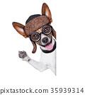 dumb crazy dog 35939314