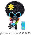 hippie dog 35939693
