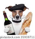 french dog wine baguette beret 35939711
