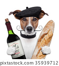 french dog wine baguette beret 35939712
