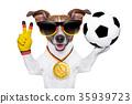 german soccer dog 35939723