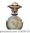travel globe compass dog safari explorer 35939733