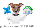 eco energy dog 35939740