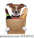 grocery bag dog wine tomatoes bread 35939742