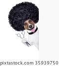 afro, animal, dog 35939750