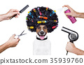 hairdresser  scissors comb dog spray 35939760