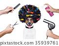 afro, dog, hairdryer 35939761