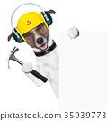 advertise, animal, background 35939773